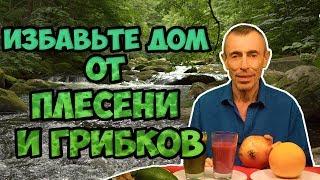 видео Шампуни Авиценна  ― Долголетие