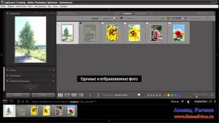 Программа для обработки фотографий LightRoom(В видео уроке рассказывается как осуществлять навигацию по каталогу в программе обработки фотографий LightRoom., 2012-08-28T06:35:47.000Z)