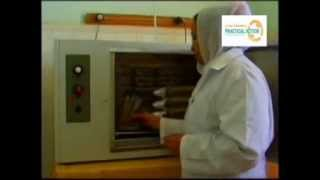 Domestic animals health care from disease, Brucellosis treatment /بروسيلا- بني عامر
