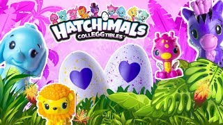 Hatching the Hatchimals CollEGGtibles Surprise Eggs! Toy Box Collectibles