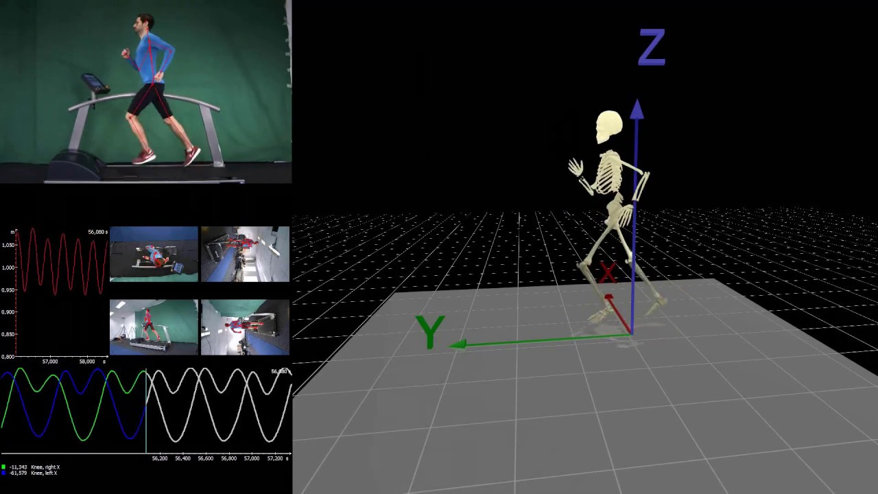 Running Analysis  markerless motion capture  Simi Shape