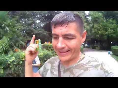 Абхазия: ЧЕСТНЫЙ отзыв . Гагра отдых в отпуске и что я думаю об этом месте
