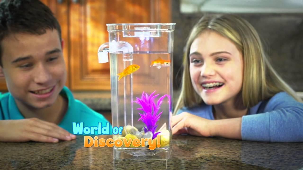 My fun fish youtube for Fish tank full movie