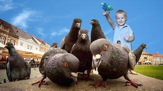 ЧЕЛЛЕНДЖ НАМОЧИ ПТИЧКУ! Энгри Бердс у нас во дворе Funny CHALLENGE Angry Birds!