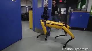 Boston Dynamics Meme