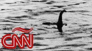 Monstruo del lago Ness podría ser una 'anguila gigante', asegura científico