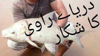Fishing at River Ravi (HD).fishing in Pakistan by Super Sports kahna nau Lahore