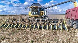🇫🇷 XL Maize Harvest 2018   [Unique] Olimac 16 Rangs + CR 9080