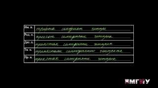 видео Употребление имен числительных в русском языке