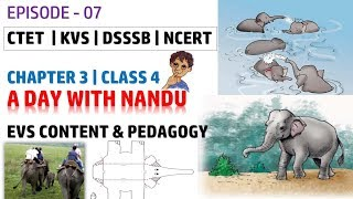 EP- 7 | A Day With Nandu | EVS Content and Pedagogy for Class 4 Chapter 2 | CTET KVS DSSSB