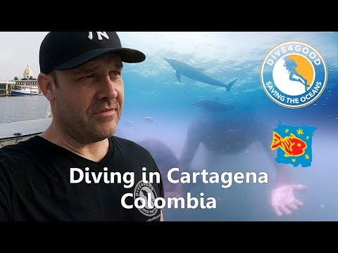 Cartagena Colombia - Eco Dive, Ocean Cleanup, and finding Ocean Plastics
