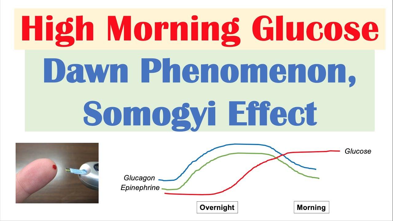 Download High Early Morning Glucose | Dawn Phenomenon & Somogyi Effect