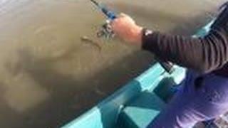 Рыбалка в дельте Волги в районе села Каралат