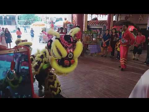 Singapore Lion Dance Cai Qing performances at Seng Hong Temple on Day 3 of CNY 18/2/18