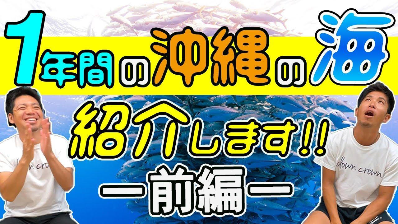 【沖縄の海】【前編】ベストタイミングっていつ?気になる年間スケジュール発表してみました!