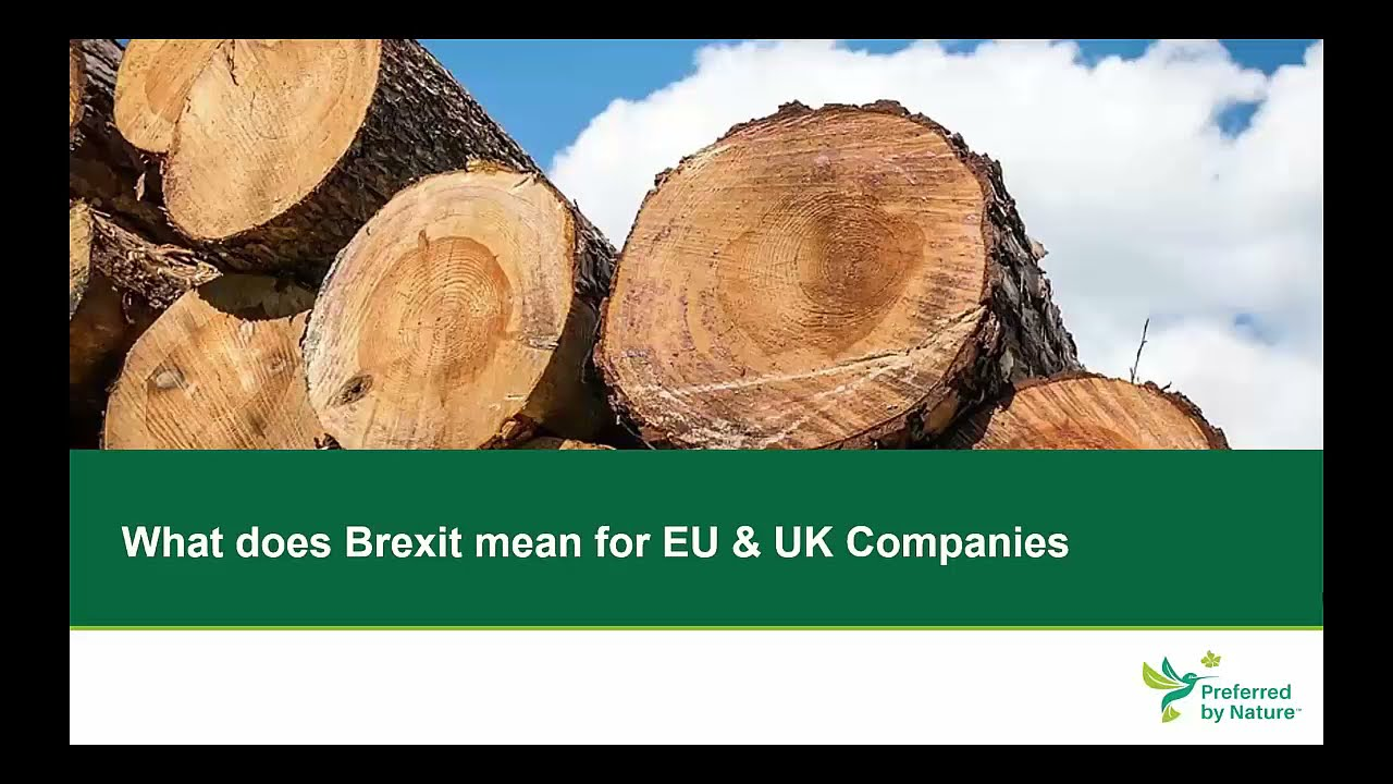Presentation about what Brexit means for EU and UK companies