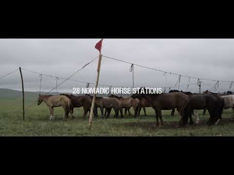 All the Wild Horses - Trailer
