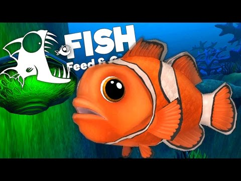 Ocean's Largest Clownfish! - Feed and Grow: Fish Gameplay