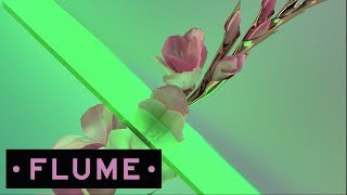 Flume Ft. Kai - Never Be Like You - Wave Racer Remix