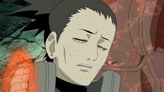 Shikamaru Almost Died  Naruto And Tsunade Saved His Life