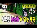 180° 3D VR 성수동 능소화가 있는 풍경 -  Seongsu-dong Trumpet Flower in Korea, Videos 3D (with Clova Dubbing)