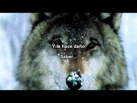 Sonata Arctica - Full Moon (Subtitulos Español)