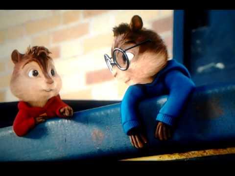 Chipmunks Fight