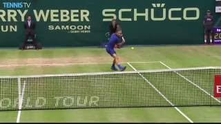 Zverev Passes Federer With Hot Shot Halle 2016