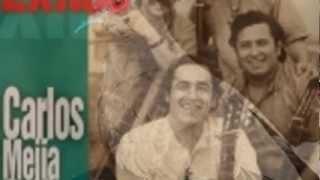 Palomita Guasiruca - Carlos Mejia Godoy y los de Palacaguina