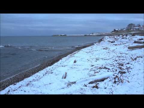 a-peaceful-snowfall-at-ross-bay-victoria-bc