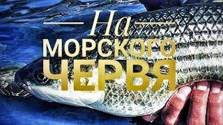 Похмельный суп или уха в армейском котелке | Fish soup in a military mess kit