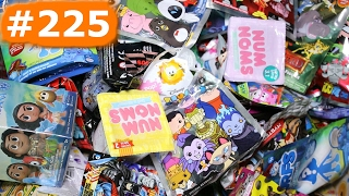 Zufällige Blind Bag Box Episode #225 - Roblox, Tier Kreuzung, Halloween Shopkins, Tsum Tsum Farbe Pop