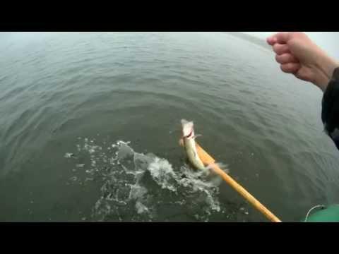 самодельная жерлица для летней рыбалки