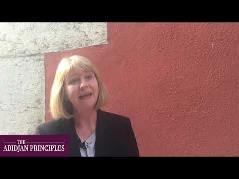 What are the Abidjan Principles?