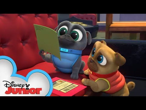Finding Bob's Valentine  | Puppy Dog Pals | Disney Junior