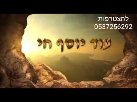 """עוד יוסף חי - חדש!! סרטון מהמם לכבוד הילולת הבן איש חי - י""""ג באלול"""
