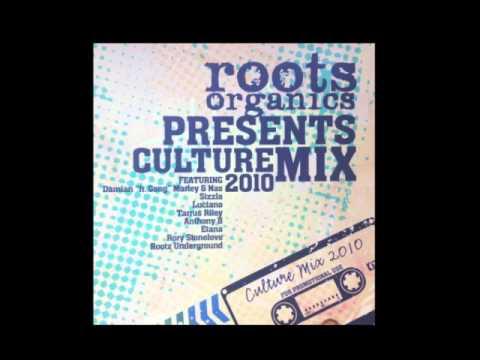 Roots Organics Presents Culture Mix 2010
