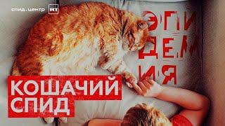 «Кошачий СПИД» / ЭПИДЕМИЯ с Антоном Красовским. Часть 7.  18+
