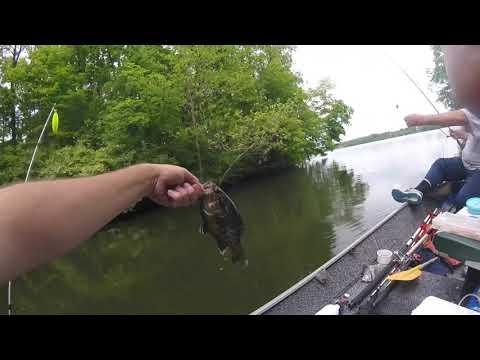 Rocky Fork Lake Ohio: Catfish Well Kinda