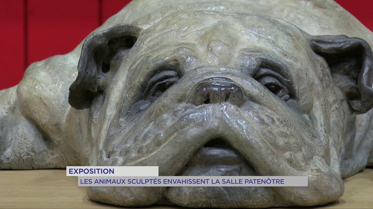 Exposition : Les animaux sculptés envahissent la salle Patenôtre