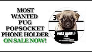 Pug Dog PopSocket Holder Mount Car Women Men Kids - PopSockets Grip and Stand for Phones and Tablets