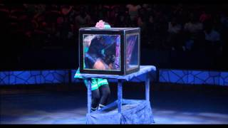 Big Apple Circus footage