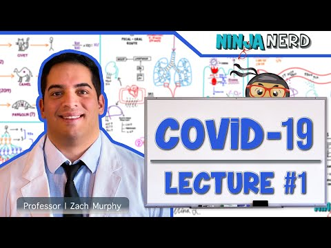 COVID-19 | Coronavirus: Epidemiology, Pathophysiology, Diagnostics