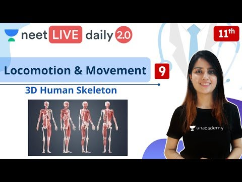 NEET: Locomotion & Movement - L9 | Live Daily 2.0 | Unacademy NEET | Seep Pahuja from YouTube · Duration:  1 hour 3 minutes 20 seconds