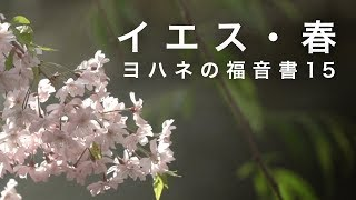 長く寒い冬は終わり、全てが新しい春!よみがえりの命。イエスにある希...