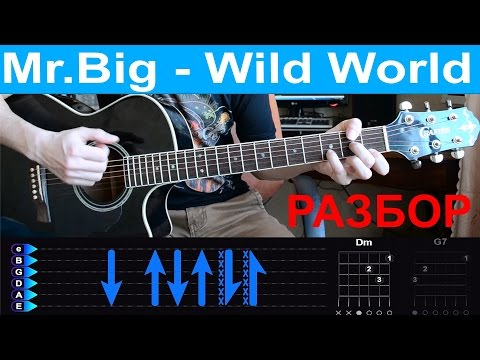 Mr Big - Wild world  Guitar tutorial