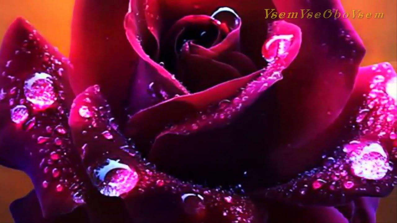 Вальс Цветов для милых женщин! VsemVseOboVsem - YouTube