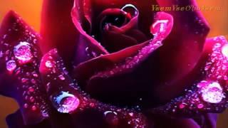 вальс Цветов для милых женщин! VsemVseOboVsem