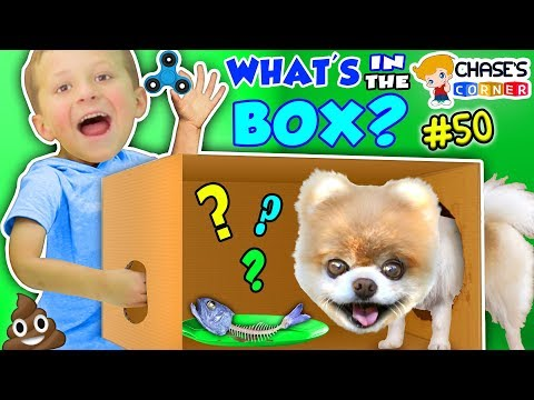 Thumbnail: Chase's Corner: WHAT'S IN THE BOX? (#50 | DOH MUCH FUN Challenge)