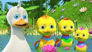 Five Little Ducks | Songs for Babies | Kindergarten Nursery Rhymes
